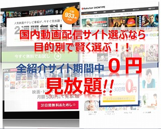 動画配信サービス比較は月額料金・無料期間・特徴から賢く選べ!!ランキング3やはりこのサイトが有力だ!!